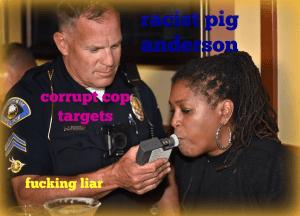 anderson racist cop