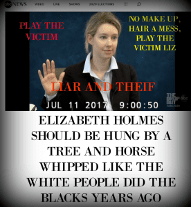 ELIZABETH HOLMES ANOTHER WHITE THEIF